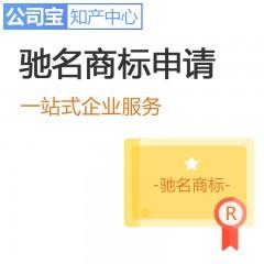 驰名商标认定 驰名商标注册 公司宝知产中心 全国