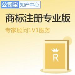 商标注册专业版 1个工作日内提交申请 全程监控每2个月反馈 公司宝知产中心